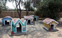 Nackthundefriedhof - Túcume, Peru