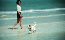 Strandspaziergang – Isla Holbox, Yucatán, Mexiko