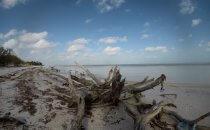 Strand auf der Isla Holbox, Yucatán, Mexiko