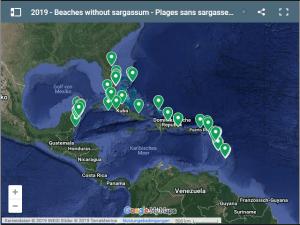 Sargassum Monitoring – betroffene Strände in der Karibik