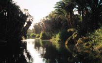 Fluss durch Mulegé