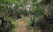 Nationalpark Rincon de la Vieja, Guanacaste, Costa Rica