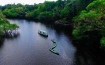 Anavilhanas Archipel am Rio Negro nahe Manaus, Brasilien